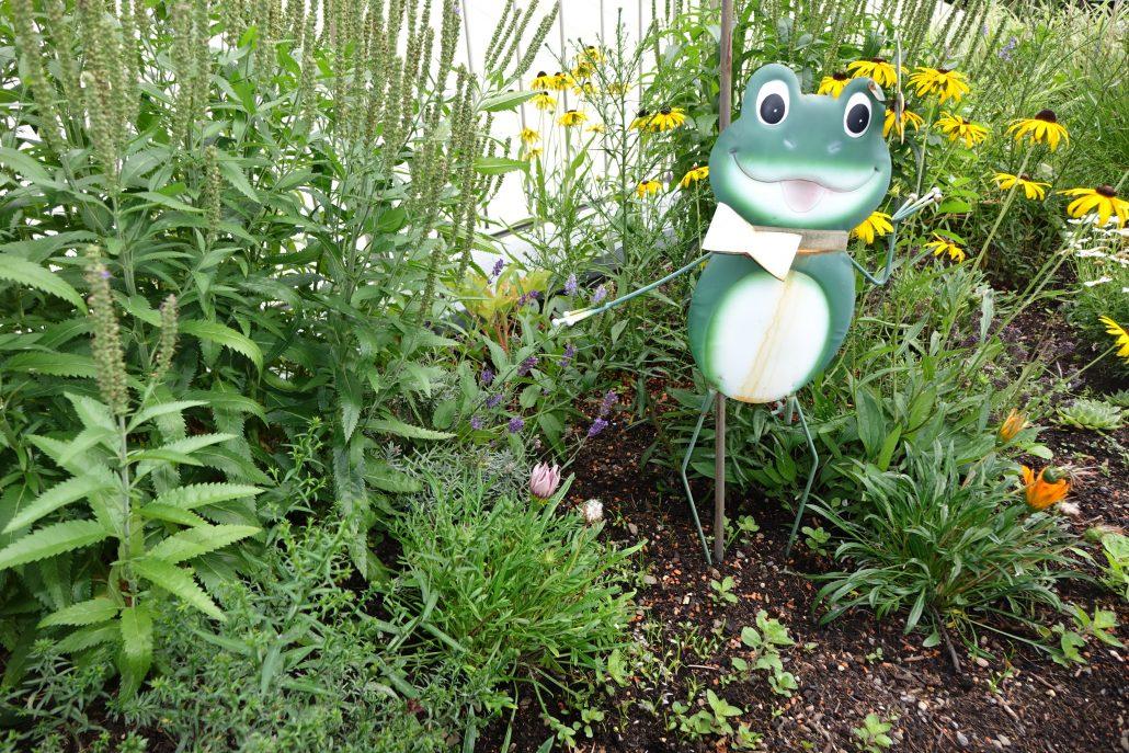 Blumen und Kräutergarten, im Zentrum Froschfigur